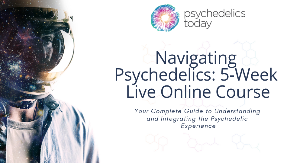 Best episodes of Psychedelics Today | Podyssey Podcasts