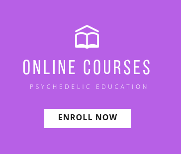 Psychedelics Today - Psychedelic Education