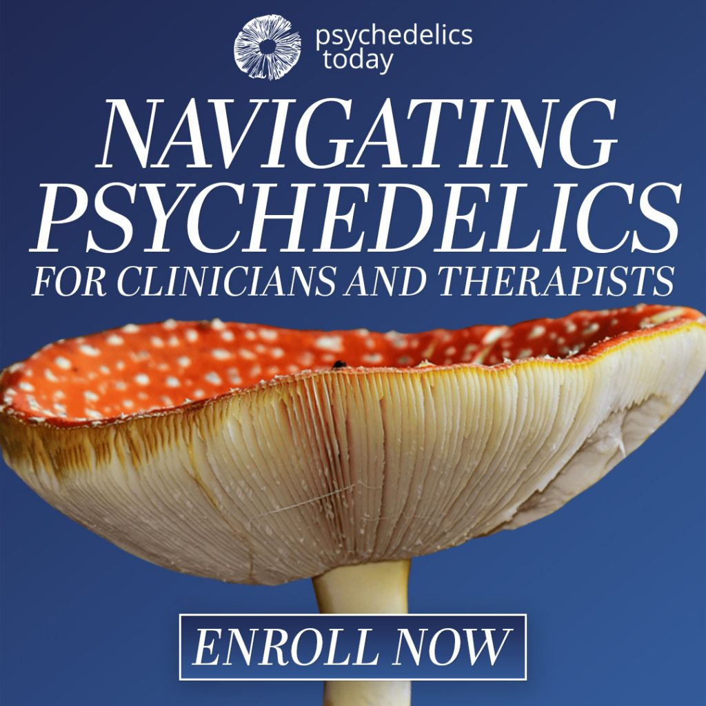 This image has an empty alt attribute; its file name is Navigating-Psychedelics-Shroom-square-1024x1024.jpg